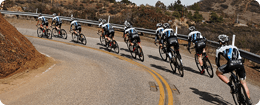 Team of racing Hagens Berman cyclists on a road